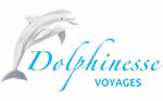 dolphinesse