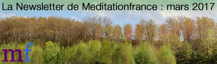 newsletter meditationfrance